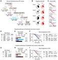 CCL3L1-CCR5 Genotype Improves the Assessment of AIDS Risk in HIV-1-Infected Individuals -Figure 2.png