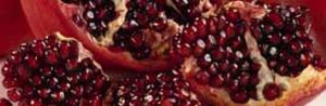 Pomegranate Juice May Be Beneficial to Dialysis Patients