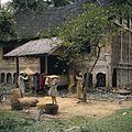 COLLECTIE TROPENMUSEUM Het wannen en drogen van rijst Kota Baru TMnr 20018424.jpg