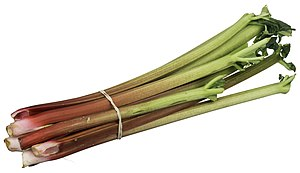 Rhubarb - A bundle of rhubarb