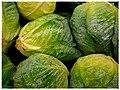 Cabbage - Flickr - pinemikey.jpg