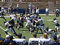 Cal football final spring scrimmage 2009-04-18 2.JPG