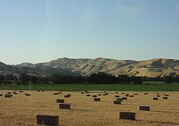 Capay Valley CA Fields 1.jpg