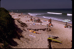 Cape Cod National Seashore CACO1242.jpg