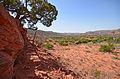 Caprock Canyon SP (13313855504).jpg