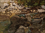 Carl Schuch - Mountain Stream with Boulders - Google Art Project.jpg
