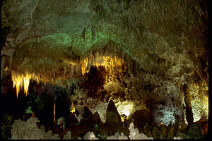 Carlsbad Caverns National Park CAVE3890.jpg