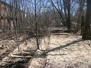 Carlton Hill (Erie Railroad station) - Carlton Hill station in March 2011, 46 years after the station closed. The partially overgrown tracks of the old Erie Railroad main line are visible along the deteriorating platform