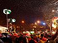 Carnaval de Dunkerque 2013-02-10 ts195007.jpg