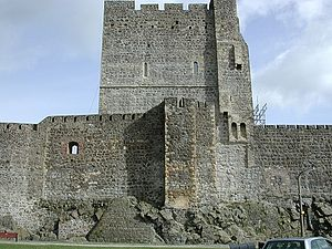 East Antrim (UK Parliament constituency) - Carrickfergus Castle