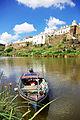 Castelo de Mértola visto do rio..jpg
