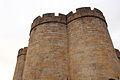 Castillo de Puebla de Sanabria (7133841533).jpg