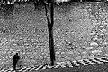 Castle wall (34880921504).jpg