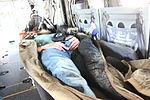 Casualty evacuation demo jump starts Fleet Week 141006-M-MP944-116.jpg