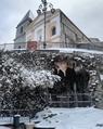 Cattedrale di Marsico Nuovo.png