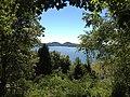 Cave Run Lake.jpg