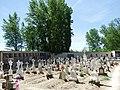 Cementerio de Berlangas de Roa 02.jpg