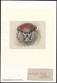 Cercopithecus cephus - 1821 - Print - Iconographia Zoologica - Special Collections University of Amsterdam - UBA01 IZA1000128.tif