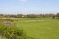 Chailly-en-Bière - 2013-05-04 - Chevaux - IMG 9763.jpg