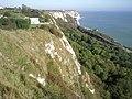 Chalk cliffs above Folkestone Warren - geograph.org.uk - 2116994.jpg