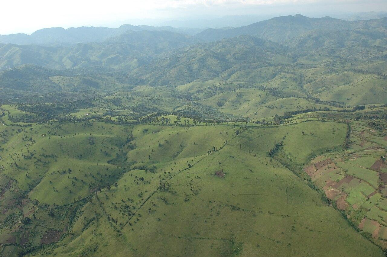 Tanah gundul di RDK, yang dulunya adalah hutan