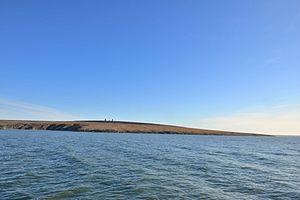Medvezhyi Islands - Image: Chetyrekstolbovoy 1 2014 08 22