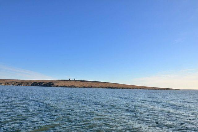 Medweschji-Inseln - Wikiwand