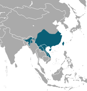 Chinese ferret-badger range