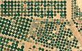 Circular irrigations in Al Jawf Region, Saudi Arabia.jpg