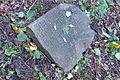 Cmentarz żydowski w Będzinie25.jpg