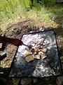 Cociendo tortillas y hongos recién cortados en el bosque de Nanacamilpa, Tlaxcala 01.jpg