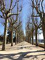 Coimbra (25167866603).jpg