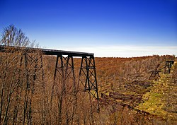 The collapsed Kinzua Bridge at Kinzua Bridge State Park in Hamlin Township