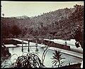 Collectie Nationaal Museum van Wereldculturen TM-60062339 Aangelegde vijvers of irrigatiesysteem Trinidad fotograaf niet bekend.jpg