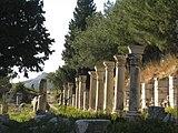 Colonnade in Ephesus