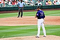 Colorado Rockies (25472146241).jpg