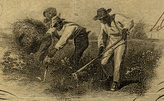 Confederate States dollar - Slaves working in the field. From a $100 C.S. banknote.