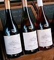 Cotes du Vivarais - vin d'Ardeche (France).JPG