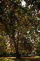 Cottingham IMG 7709 - panoramio.jpg