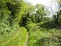 Country Lane, Co Meath - geograph.org.uk - 1878542.jpg