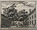 Courtyard view with trees of the Leper Hospital, Amsterdam. Wellcome V0012141.jpg