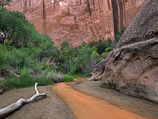 Canyons of the Escalante collective name for the erosional landforms created by the Escalante River and its tributaries