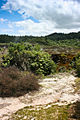 Craters of the Moon TAUPO-1171.jpg