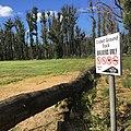 Cricket Ground track.jpg