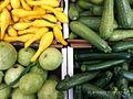 Cucurbita pepo Summer Squash varieties - straightneck, round zucchini (summer pumpkin), zucchini.jpg