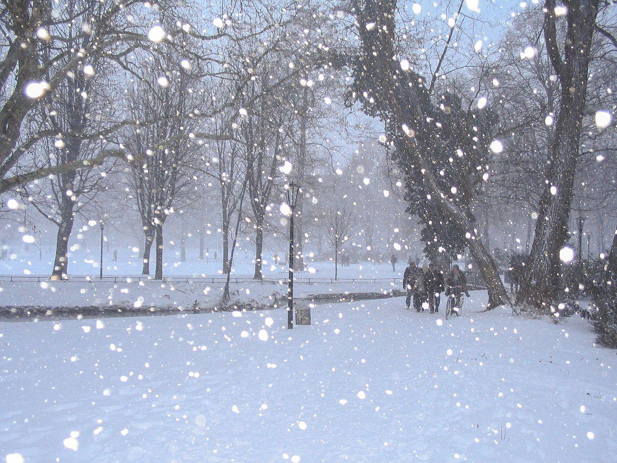 Resultado de imagen de nevando con copos de nieve grandes