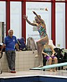 DHM Wasserspringen 1m weiblich A-Jugend (Martin Rulsch) 055.jpg