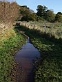 Damp footpath near the Kenn - geograph.org.uk - 1570909.jpg