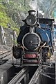 Darjeeling Himalayan Railway,toy train (5).jpg