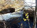 Davis Pond, Maine (15758298928).jpg